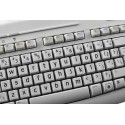 English US Large Lettering (Lower case) keyboard stickers