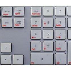 Boot Camp Spanish transparent keyboard sticker APPLE SIZE