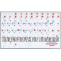 Japanese Hiragana - Korean transparent keyboard  stickers