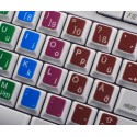 Learning German Colored non transparent keyboard stickers