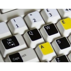 Learning English US Colored Apple non transparent keyboard stickers