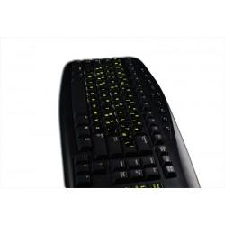 Glowing fluorescent Programmer Dvorak keyboard sticker
