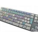FRUITY LOOPS Galaxy series keyboard sticker apple