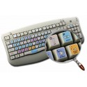 Sony Sonaps keyboard sticker