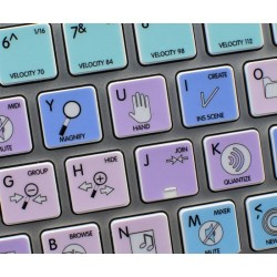 REASON Galaxy series keyboard sticker apple