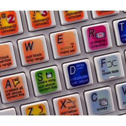 RENOISE keyboard sticker