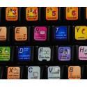 RENOISE keyboard sticker