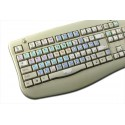 Aurora Edit Galaxy series keyboard sticker 12x12 size