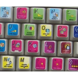 Avid DS Nitris keyboard sticker