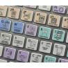 Sony Vegas Galaxy series keyboard sticker