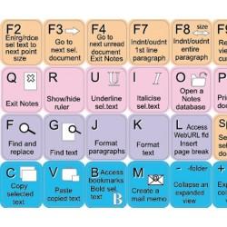 IBM Lotus Notes keyboard sticker