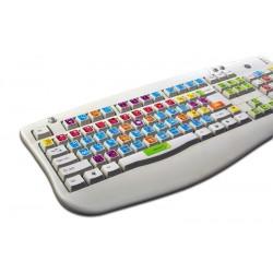 3DS MAX keyboard sticker