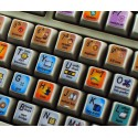 Autodesk Softimage keyboard sticker