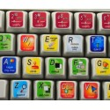 ImageReady keyboard sticker