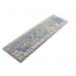 Corel Painter Galaxy series keyboard sticker