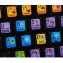 Houdini Master keyboard sticker