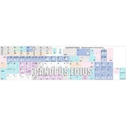 Canopus EDIUS Galaxy series keyboard sticker