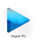 Magix Vegas Sticker | 4keyboard.com